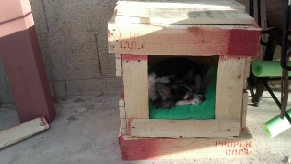 Pallet Dog House Pallet Huts, Cabins & Playhouses