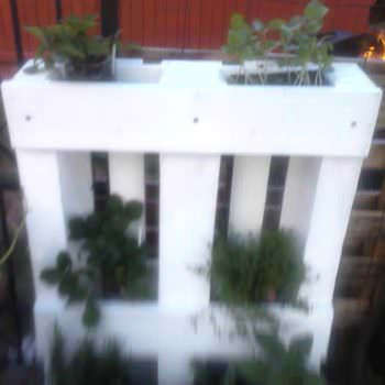 The Pallet Herb Planter